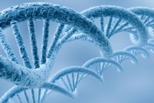 What-is-Forensic-DNA-Analysis-300x225